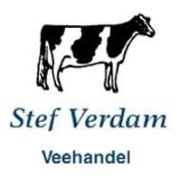 Stef Verdam Veehandel